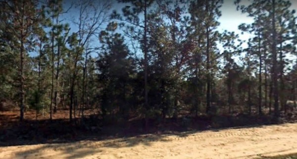 0.6 Acres for Sale in Florahome, FL