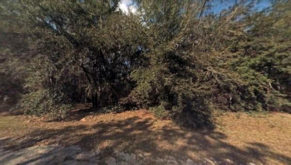 0.22 Acres for Sale in Citrus Springs, FL