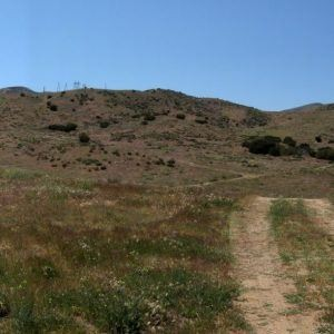 7.99 Acres for Sale in Acton, CA