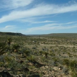 10.32 Acres for Sale in Dell City, TX