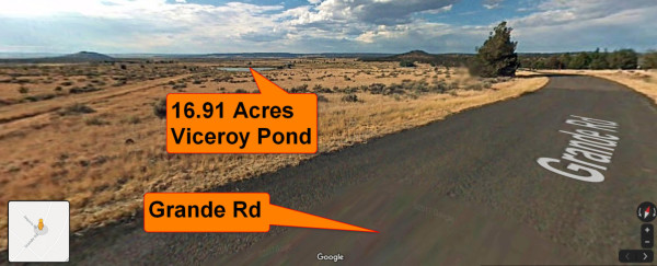 16.91 Acres VICEROY POND