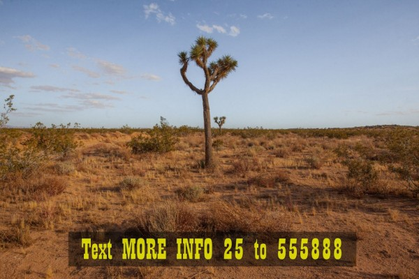 2 Acres for Sale in Landers, CA