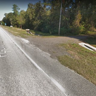 1.2 Acres for Sale in Hawthorne, FL