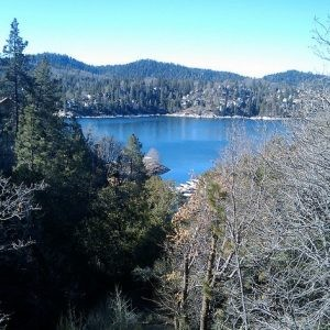 0.09 Acres for Sale in Cedar Glen, CA