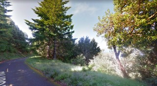0.24 Acres for Sale in Shelter Cove, CA