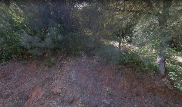 hillside property