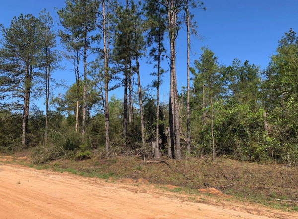 0.95 Acres for Sale in Alford, FL