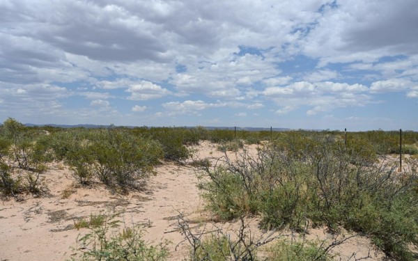 0.23 Acres for Sale in El Paso, TX