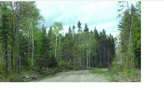 86 Acres for Sale in Limestone, ME
