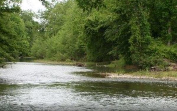 0.34 Acres for Sale in Savannah, TN