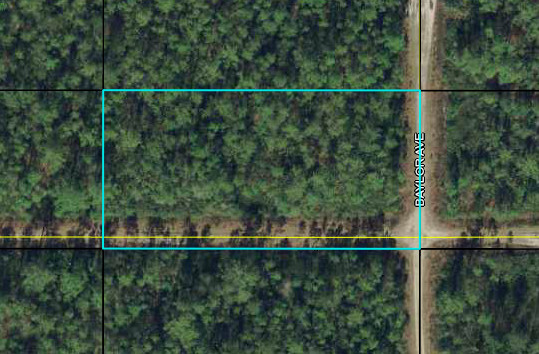 Land for Sale in Bunnell, FL