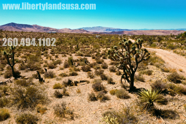 1 Acre for Sale in Willow Beach, AZ