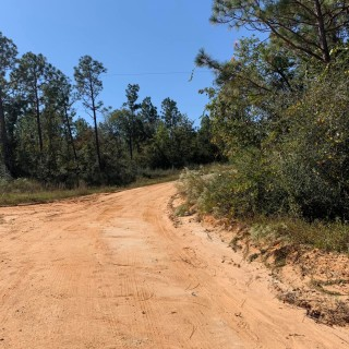 1.15 Acres for Sale in Alford, FL