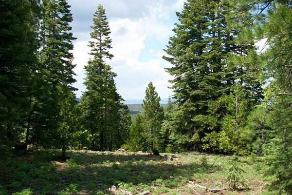 0.99 Acres for Sale in Alturas, CA