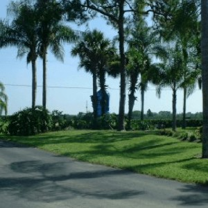 0.32 Acres for Sale in Lake Placid, FL