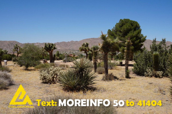1.25 Acres for Sale in Yucca Valley, CA