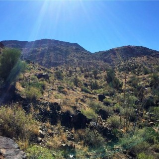 37.7 Acres for Sale in Hackberry, AZ