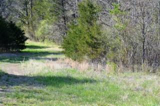 2.3 Acres for Sale in Lead Hill, AR