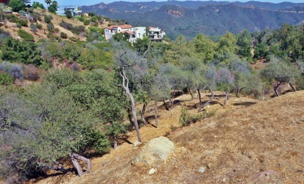 hillside property with downslope from the road