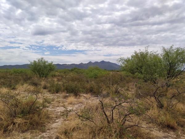 2.5 Acres for Sale in Elfrida, AZ