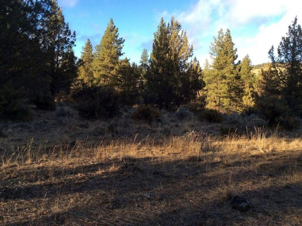 2.32 Acres for Sale in Beatty, OR