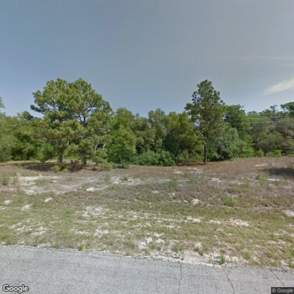 0.24 Acres for Sale in Citrus Springs, FL