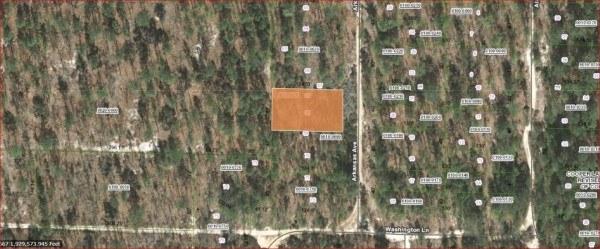 0.25 Acres for Sale in Hawthorne, FL