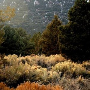 0.06 Acres for Sale in Big Bear City, CA