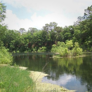 0.17 Acres for Sale in Brooksville, FL