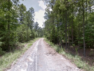 0.29 Acres for Sale in Brookeland, TX