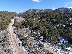 15 Acres for Sale in Fort Garland, CO