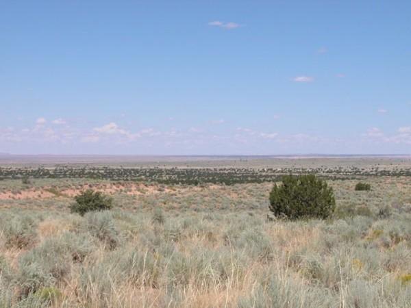 1.21 Acres for Sale in Holbrook, AZ
