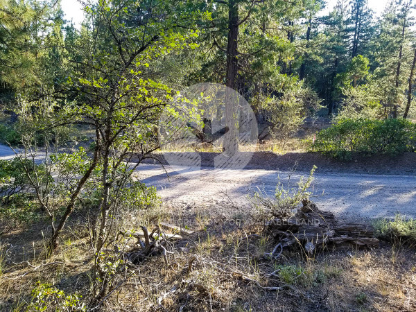 5.44 Acres for Sale in Bonanza, OR