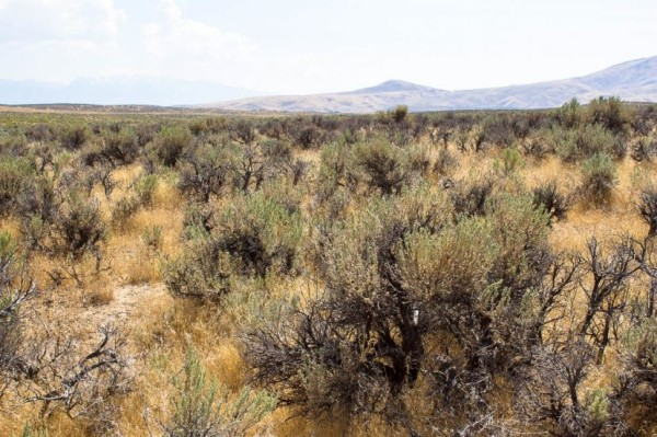 2.27 Acres for Sale in Elko, NV