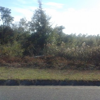 0.25 Acres for Sale in Milton, FL