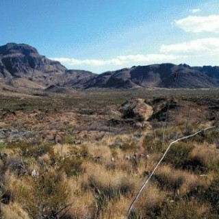 10 Acres for Sale in Marfa, TX