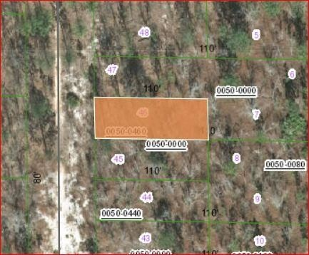 0.2 Acres for Sale in Hawthorne, FL