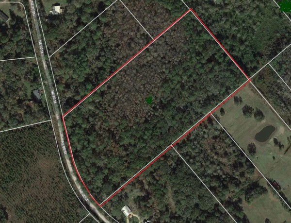 16.9 Acres for Sale in Gainesville, FL