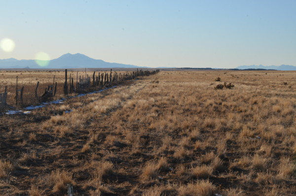 35.5 Acres for Sale in Model, CO