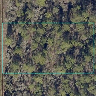 1.14 Acres for Sale in Hastings, FL