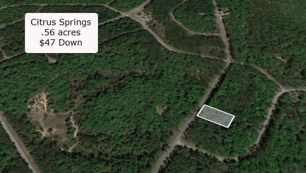 0.56 Acres for Sale in Dunnellon, FL
