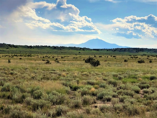 72 Acres for Sale in Model, CO