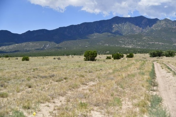 35 Acres for Sale in Rye, CO