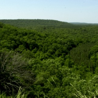 0.2 Acres for Sale in Mountain Home, AR