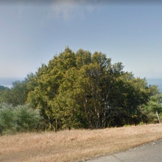 0.29 Acres for Sale in Shelter Cove, CA